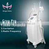 High Quality Fat Freezing Fitness Machine Vacuum Local Fat Removal Suction Slimming Machine Cryolipolysis Lipo Laser From China Fat Melting