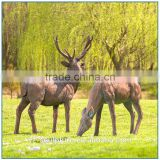 A Pair Of Bronze Deer elk Statue for home decoration