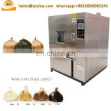 black garlic fermentation box machine korea black garlic fermentation machine