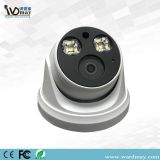 Full Starlight Dome Network IP Camera From CCTV Cameras Suppliers