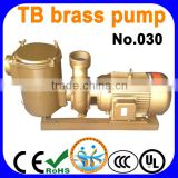 TB brass pump for swimming pool, water pump