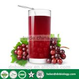 Natural Pure freeze dried grape concentrate juice powder