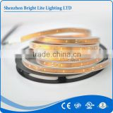 SMD led flexible strip light led 3014 Waterproof IP67 IP68 Cold White 30LED UL certificate led strip light