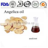 Manufacturer supply angelica sinensis extraction pharmaceutical oil