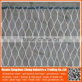 virgin hdpe agricultural anti bird net , nylon netting fabric protect fruits trees with uv