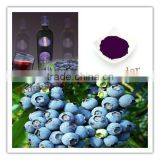 Fresh fruit High quality Manufacturer Blueberry juice powder 25%anthocyanins by HPLC