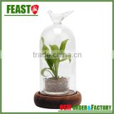 high borocilicate clear glass bell jar with glass dome cover
