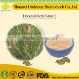 Natural Remedies for Hemostasis/Eastern Medicine/Horsetail/Equisetum arvense/Tradition Chinese Herbal Extract