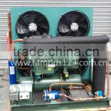 Bitzer cold room Condensing Unit,air cooled condensing unit ,20hp bitzer cond unit fornsing unit for cold room storage (S6J16.2)