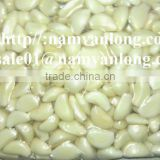 EXPORT FROZEN GARLIC WITH HIGH QUALITY AND COMPETITIVE PRICE.