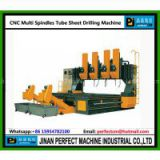Multi Spindles CNC Drilling Machine for Steel Plate