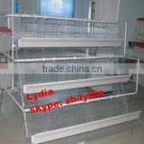 Design Layer Chicken Cages For Kenya Poultry Farming Equipment (lydia : 0086-15965977837)
