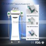 Fast Cool Sculpting Fat Freeze Cell Cryolipolysis Slimming Reshaping Slimming Machines For Abdomen Arm And Thighs Fat Melting