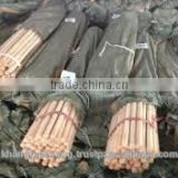 Varnish Wooden Broom Handles from Vietnam