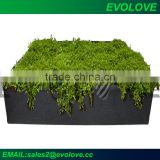 Green felt indoor flower pots