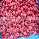 Mixed Berries Frozen Raspberries,strawberry,blueberry,blackberry,gooseberry iqf Lingonberries