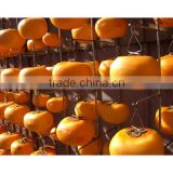 Hanging Tomato clip dried fruits making clip Made in Japan