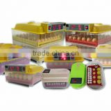 WQ-12 Capacity 12 eggs incubator and hatcher from china