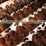 HOT!!! brazilian human hair,human hair extensions bulk,deep curly,no tangle,shedding free