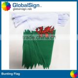 Hot Selling Polyester Triangle Flags
