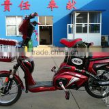 hot sales popular design 350W 48V 12AH 2 wheel electric bicycle