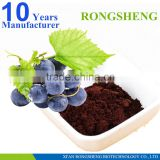 High quality Grape Skin Powder