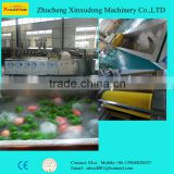 Automatic Vegetable Fruit Air Bubble Washing Machine; Bubble washing for vegetable fruit