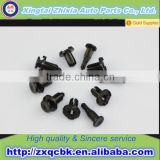 Good Price Car Spare Parts Plastic Fasteners for Cars Clips and Fasteners/ Plastic Auto Body Fastener/ Nylon Clips