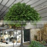 SJ2001037 Ornamental foliage plants/fake metal ficus tree/artifiical banyan tree for decoration