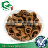 supply cinnamon bark with low price