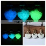 Glow In The Dark Necklace with Fairy, Fantasy Glowing Jewerly wishing bottle necklace