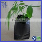 Factory manufactured black poly tree planting bag with hole with low price and top quality