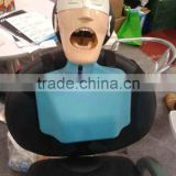 adjustable Dental Manikin with water drainage system