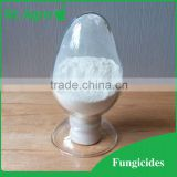 95% TC, 50%WP agriculture chemicals fungicide benomyl