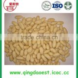 supply high demand healthy products raw peanuts blanched peanut kernel from china with high quality