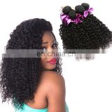 Factory wholesale malaysian human hair, 100% unprocessed malaysian virgin hair, malaysian curly bundle
