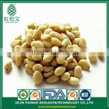Promotion Constant Supply Wild Harvest Siberian Pine Nut Kernels