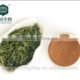 Shaanxi Dongyu Bio-Tech Co , Ltd  - natural plant extracts