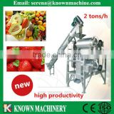 grinder strawberry/fruit grinder/fruit grinder machine