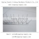 Factory Direct Sale Metal Anti Bird Spikes 304 Stainless Steel 50 CM Length Bird Control