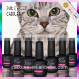 cat eye uv gel glitter powder uv gel polish peel off nail polish for nail art