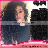 New Arrival Hot 100% virgin brazilian hair vendors unprocessed wholesale virgin brazilian hair virgin hair vendors