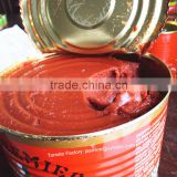 70g easy open canned tomato paste hot brix 28-30% ( Newly added tomato paste products for West Africa) )