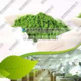 Manufacturers wheat grass production wholesale Certified Organic Bulk Wheatgrass Powder