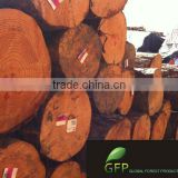 NZ Radiata Pine logs - Container delivery