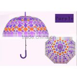 WENTOU Personalized Colorful Clear Bubble Dome Rain Umbrella
