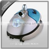 LT-8808 Champagne steam generator ficial fabric iron machine                                                                         Quality Choice