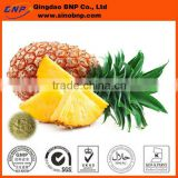 Sells Best Quality Fresh Pineapple Extract powder