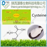 Factory supply food grade l cysteine/ l-cysteine High quality N-Acetyl Cysteine 616-91-1