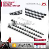 galvanized small head nails, brad head nail, low carbon steel bullet head nail, formwork nail for Australia